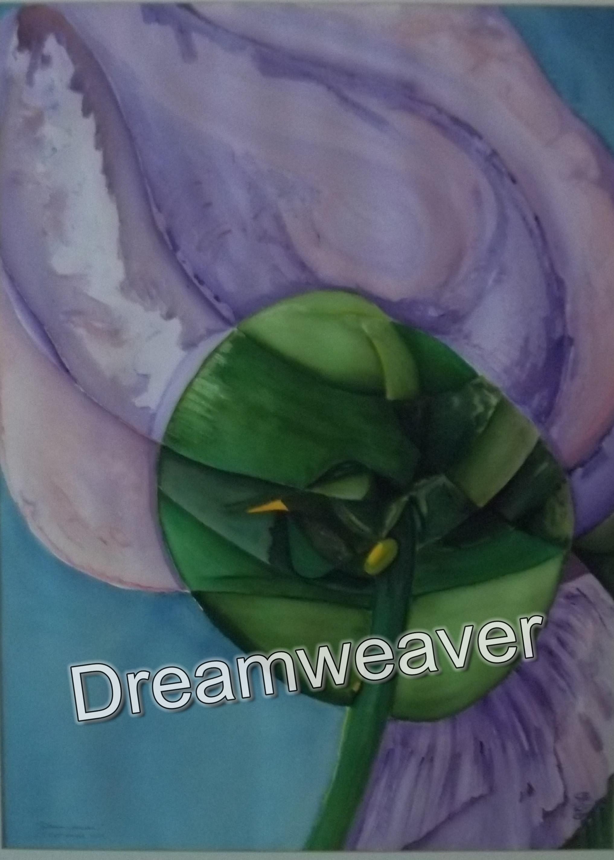 27 September 1999 By Dreamweaver